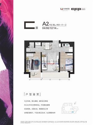 中洲坊创意中心A2户型